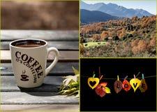 El collage del otoño Fotografía de archivo