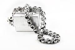 El collar de cadena masivo de los hombres Fotos de archivo libres de regalías