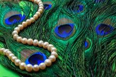 El collar femenino de las perlas en un fondo del pavo real empluma Imagen de archivo libre de regalías