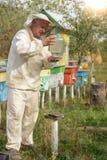 El colmenar del apicultor pone un cuenco de agua para las abejas Imagen de archivo