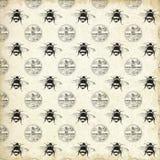 El colmenar del vintage model? - las abejas del vintage - la abeja reina de papel - abejorro - estilo del cortijo - negro - blanc ilustración del vector
