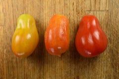 El color de Roma Tomatoes Imagen de archivo libre de regalías