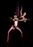El color de rosa del cantante realiza en el escenario imagen de archivo libre de regalías
