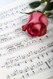 El color de rosa se levantó en música de hoja imagen de archivo libre de regalías