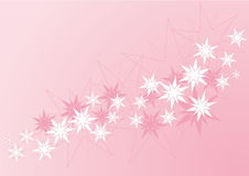 El color de rosa stars la bandera Imagen de archivo