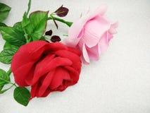 El color de rosa y el rojo se levantaron Fotografía de archivo
