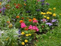 El color del verano imagenes de archivo