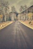 El color retro entonó el camino del otoño después de la lluvia Imagenes de archivo
