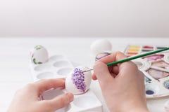El colorante eggs los colores para Pascua, ejemplo botánico Fotos de archivo libres de regalías