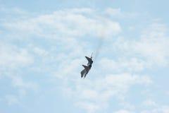 El combatiente de jet táctico que vuela MIG-29 hace virage Imagen de archivo