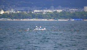 El comienzo del maratón Galata-Varna 2015 de la natación Foto de archivo