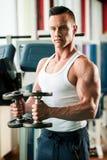El competidor de la aptitud de Phisique se resuelve en pesas de gimnasia de elevación del gimnasio Imagenes de archivo