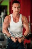 El competidor de la aptitud de Phisique se resuelve en pesas de gimnasia de elevación del gimnasio Fotos de archivo
