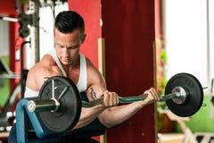 El competidor de la aptitud de Phisique se resuelve en pesas de gimnasia de elevación del gimnasio Foto de archivo