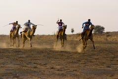 El competir con de camello en Jaisalmer Imagen de archivo libre de regalías