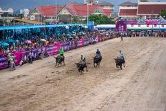 El competir con del búfalo del festival Fotografía de archivo