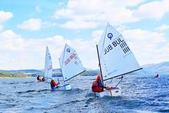 El competir con del optimista de los cadetes de los barcos de navegación Fotografía de archivo libre de regalías