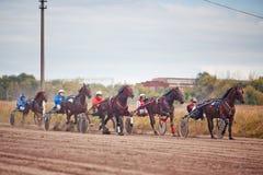 El competir con para las razas el trotar de los caballos Imagen de archivo libre de regalías