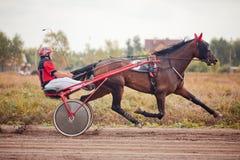 El competir con para las razas el trotar de los caballos Fotos de archivo
