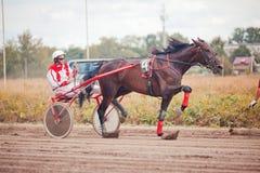 El competir con para las razas el trotar de los caballos Foto de archivo libre de regalías