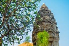 El complejo del templo de Angkor Imagen de archivo