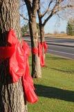 El compromiso rojo de la semana de la cinta dice no a las drogas Imagen de archivo libre de regalías