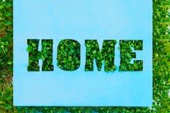 El concepto creativo con el espacio en blanco del papel azul con el hogar de las letras del esquema en hierba fresca verde brota  Imágenes de archivo libres de regalías
