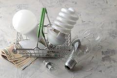 El concepto de electricidad del ahorro dinero y diversos bulbos en una cesta en un fondo ligero la opción entre económico fotos de archivo