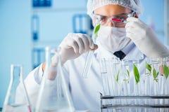 El concepto de la biotecnología con el científico en laboratorio fotografía de archivo