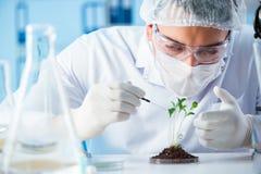 El concepto de la biotecnología con el científico en laboratorio foto de archivo