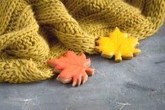 El concepto de la comida del otoño con la foto horizontal de la bufanda y del pan de jengibre copia el espacio Foto de archivo libre de regalías