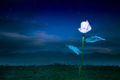 El concepto de la energía, conecta a tierra la planta de bombilla amistosa en la noche Fotografía de archivo