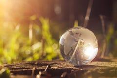El concepto de la naturaleza, bola de cristal verde del bosque en un tocón de madera con las hojas Imagen de archivo libre de regalías