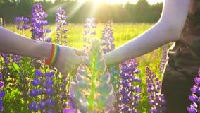 El concepto de LGBT, dos manos que se detienen está en el campo en la puesta del sol almacen de metraje de vídeo