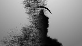 El concepto de un virus de ordenador Ordenador infectado, muerte al ordenador 4 foto de archivo