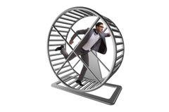 El concepto del negocio con el hombre de negocios que corre en la rueda del hámster imagen de archivo libre de regalías