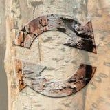 El concepto ecológico con recicla la muestra en fondo de la corteza de árbol Imágenes de archivo libres de regalías
