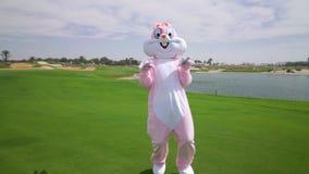 El conejo de tamaño natural que va loco, divirtiéndose, celebra pascua El conejito de pascua feliz caza los huevos almacen de metraje de vídeo