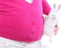 El conejo del juguete toca el vientre de la mujer embarazada Fotos de archivo libres de regalías