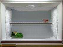 El congelador necesita descongelar Fotografía de archivo
