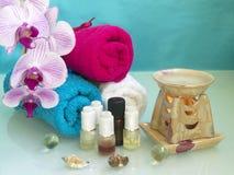 El conjunto de aromatherapy Fotografía de archivo libre de regalías