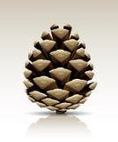 El cono del pino del vector aisló