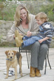 El conseguir listo para recorrer el perro Fotografía de archivo libre de regalías