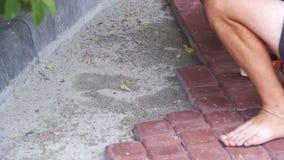 El constructor está poniendo piedras de pavimentación Cámara lenta almacen de video