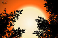 El contorno negro del vector del árbol se va en fondo anaranjado de la puesta del sol Imágenes de archivo libres de regalías