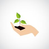 El control de la mano protege la planta ilustración del vector