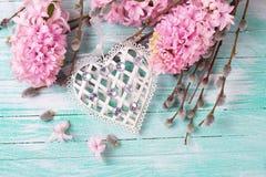 El corazón blanco del decoratve con los jacintos y el sauce florece Imagen de archivo
