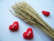 El corazón bordó letras rojas ama y oído del arroz Imagen de archivo