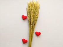 El corazón bordó letras rojas ama y oído del arroz Imágenes de archivo libres de regalías
