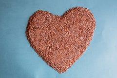 El corazón de las semillas Fotografía de archivo libre de regalías